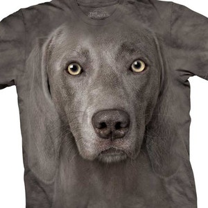 What a fun fun site!: Dogs, Weimaraner Faces, Faces Tshirt, Faces T Shirts, Fab Com, Weimaraner T Shirts, Weimaraner Tshirt, Animal Tshirt, Big Faces