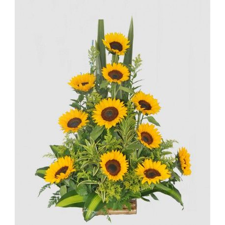 Siempre hay alguien de admirar, Girasoles para quien son inspiración. Arreglo floral con una docena de girasoles.