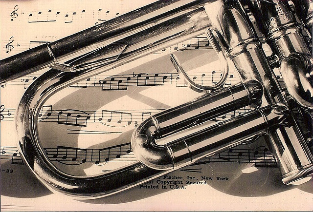 Played trumpet in grade school and high school.  I don't play now, but I still have a passion for playing.