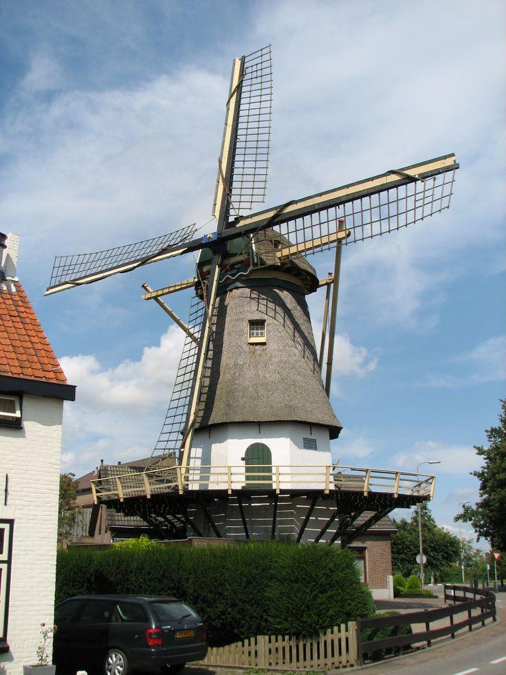 Maasdam, De Hoop
