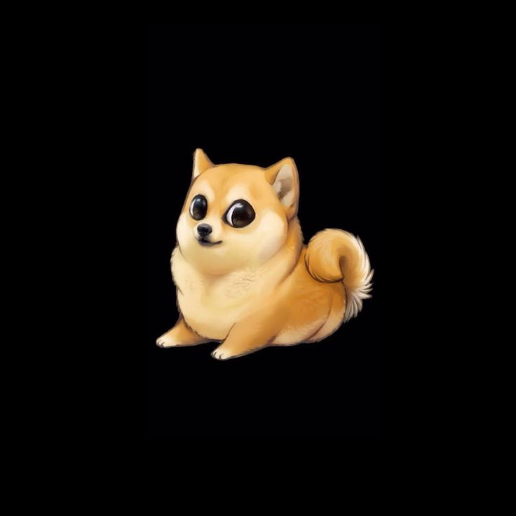 doge is so cute I was looking at this when browsing  wallpapers and I thought it was so CUTE