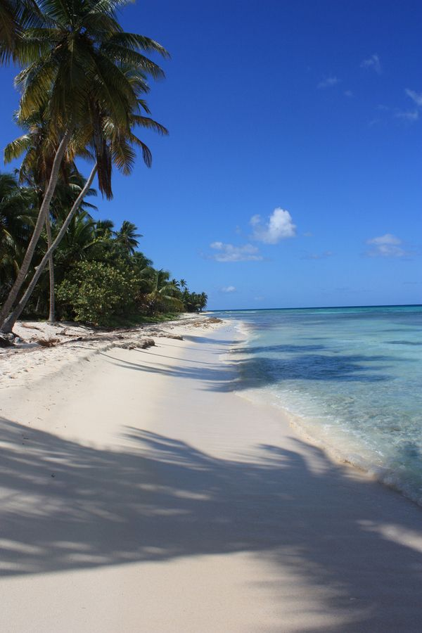 beach on Saona Island, Dominican Republic