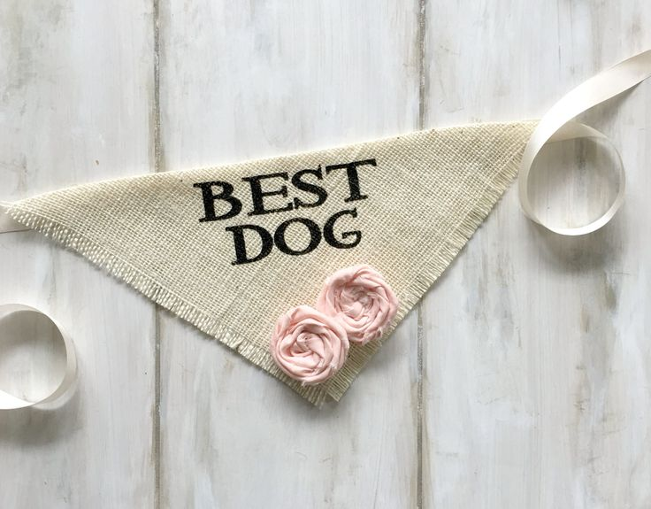 - Repinned by Prindler Productions - Best Dog - Wedding Dog Bandana with Flowers