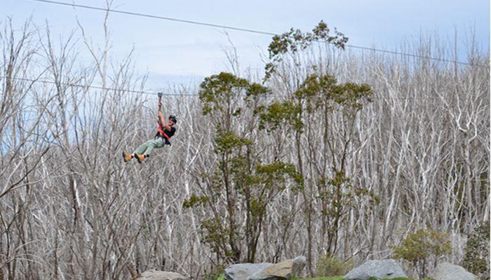 Ziplining at Lake Mountain Alpine Resort near Marysville, Victoria. www.marysvilletourism.com