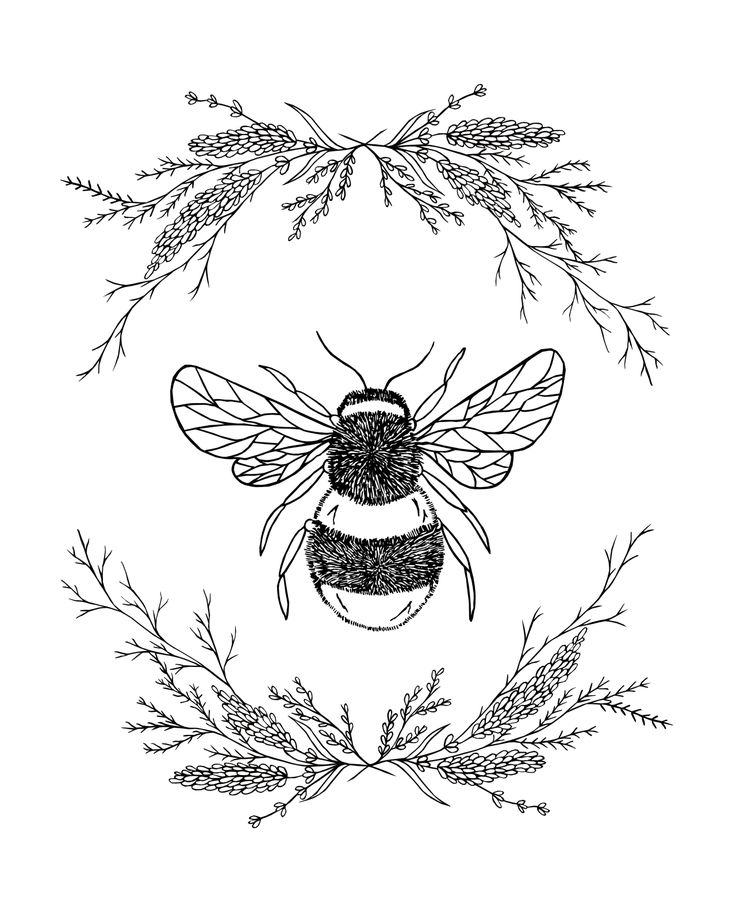 пчелы в графике картинки вышел