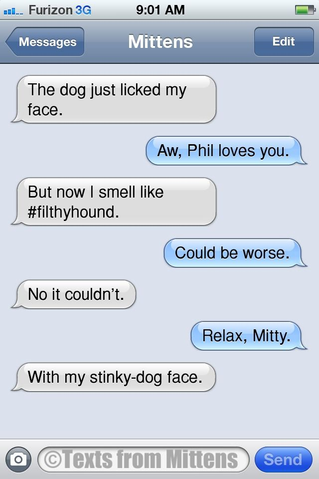 Cat And Dog Texts