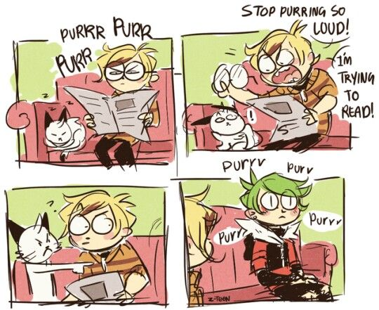 TED CAN PURR