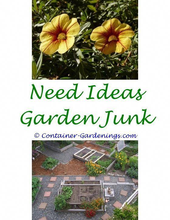 Garden Ideas On A Budget Party Wedding Uk Tool Organization