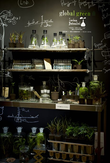 Azuma Makoto #shop #display #science #lab #plants #green #garden #chalkboard #wall #flasks #test #tubes.  ECKMANN STUDIO LOVE
