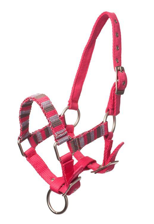 Bestel nu dit #halster voor uw paard #pony en shetlander bij MiniHorseShop. Alles voor #paard #minipaarden #shetlanders