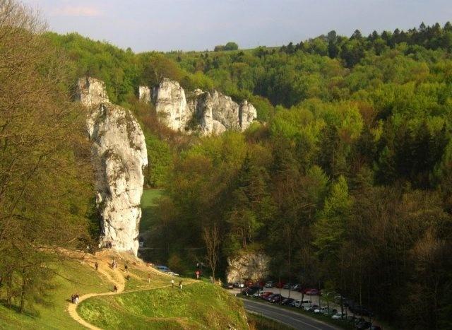 Poland - Dolina Prądnika. Dolina Prądnika na obszarze Ojcowskiego Parku Narodowego uważana jest za najładniejszą dolinę w Jurze Krakowsko-Częstochowskiej. Skalne ściany ciągną się nawet kilkaset metrów wzdłuż obu brzegów Prądnika, a urwiska zmieniają miejscami dolinę w kanion. Są tu także ciekawe jaskinie i piękne lasy bukowe i jaworowe, porastające opadające w dolinę zbocza.