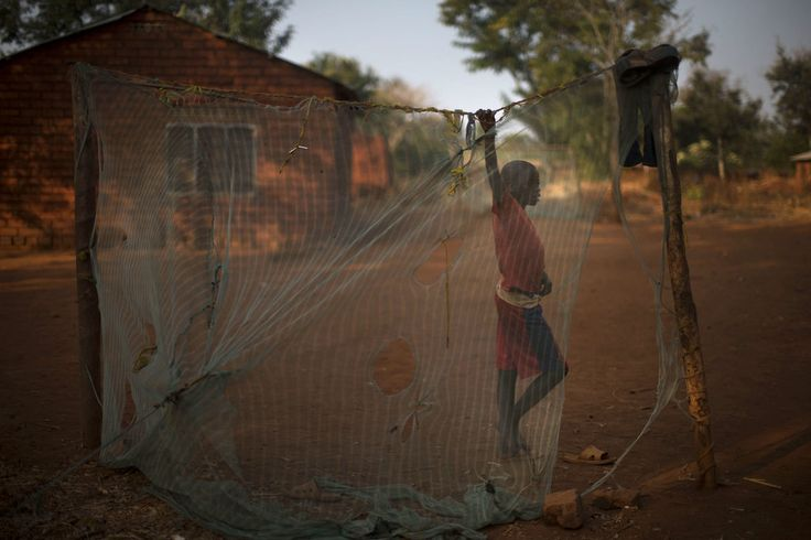 The nets, with holes smaller than mosquitoes, trap much more than traditional fishing nets do and could wipe out stressed fish populations in Africa.