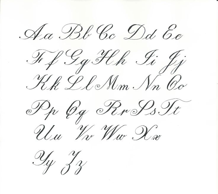 82 Best Calligraphic Flourishes Images On Pinterest