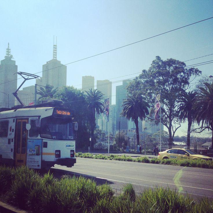 Melbourne. Trams, Trees, Building, Sunshine.