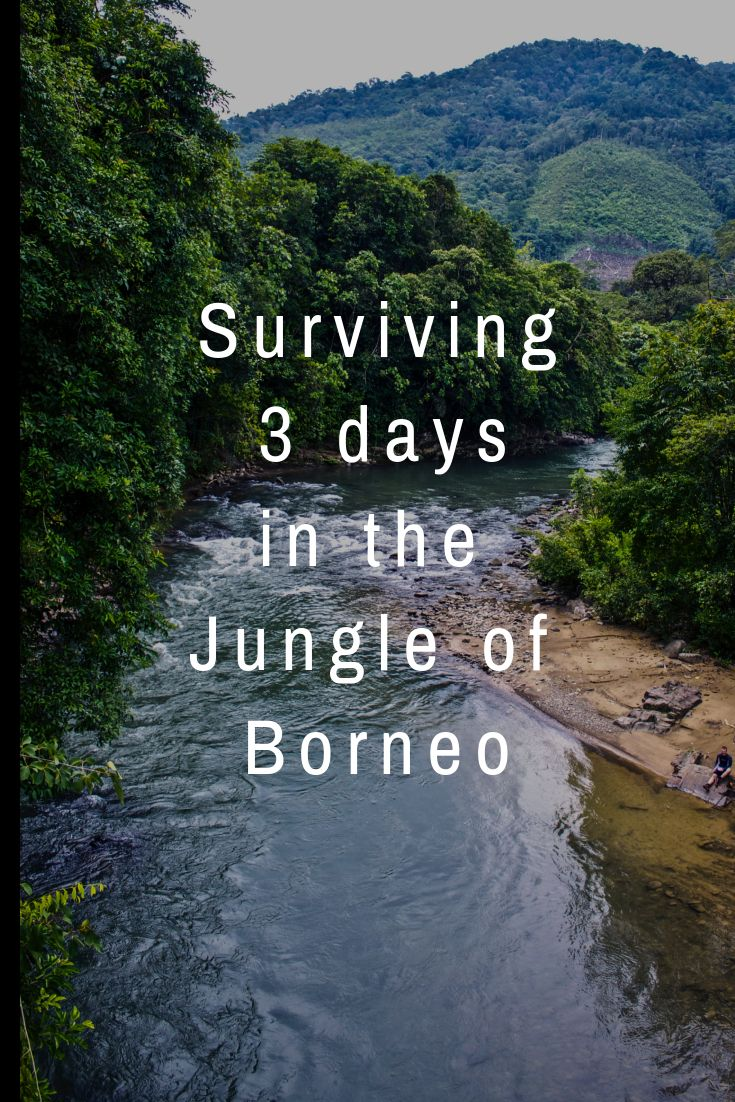 I survived 3 days hiking through the jungle of Borneo  Indonesia - Borneo - Hiking - salt trails