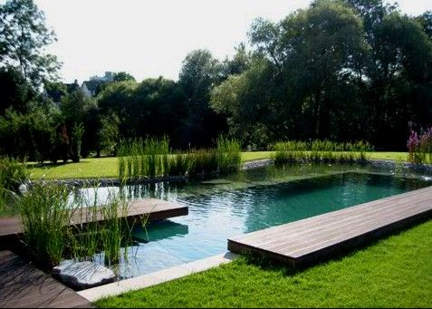 Naturpool, integrating nature in and around the pool while keeping it inviting.