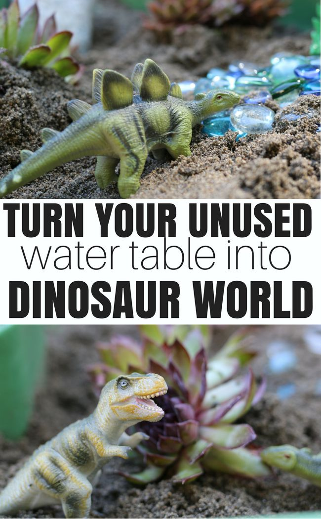 Turn your water table into a dinosaur world with plants, dinosaur toys, and sand! Super fun summer activity to play with outside.