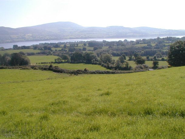 Land At Carhucore, Ogonelloe, Co. Clare - agricultural land for sale at e160,000 from Harry Brann Auctioneers