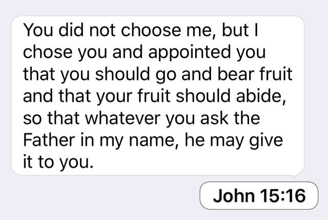 John 15:16: You did not choose me, but I chose you and appointed you that you should go and bear fruit and that your fruit should abide, so that whatever you ask the Father in my name, he may give it to you.