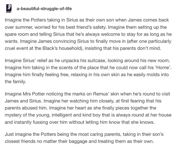 Sirius Black and The Potters<— they forgot Peter, which kinda bugs me