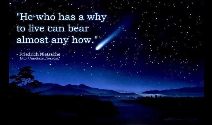 He who has a why to live can bear almost any how - Friedrich Nietzsche Quote  www. motivatetolive.com   blog
