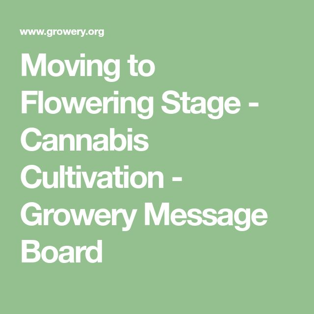 Moving to Flowering Stage - Cannabis Cultivation - Growery Message Board