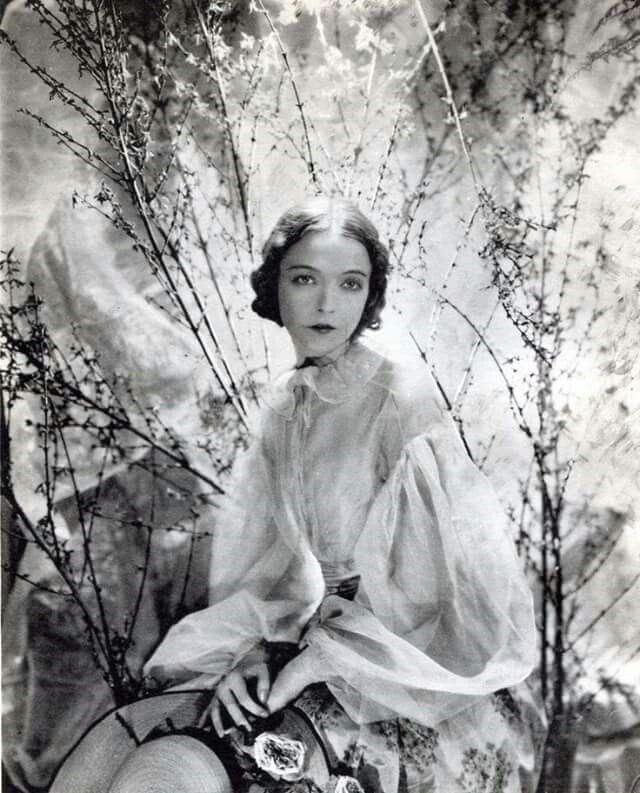 the life and career of lillian gish the first lady of american cinema Lillian gish: first lady of american cinema wikimedia  as we remember gish  on her birthday, we're taking a trip through her amazing acting career when gish   the life she lived was long, and the legacy she left behind extraordinary.