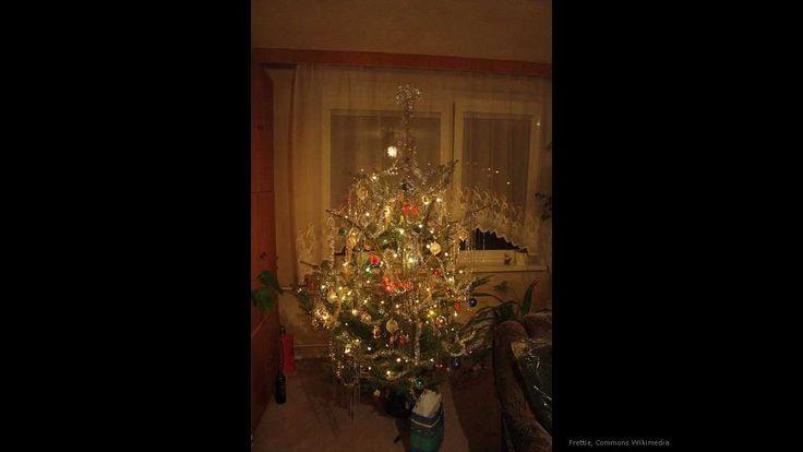 Vánoční pohádka o jedličce a červeném ptáčku