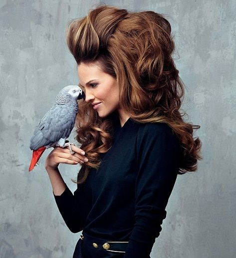 Hillary Swank has big hair and an African grey parrot :)