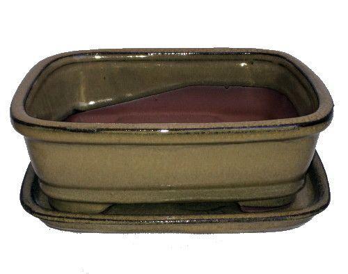 """Ceramic Bonsai Pot/Attached Saucer - Mustard - 8"""""""" x 6.25"""""""" x 3"""""""" + Felt Feet"""