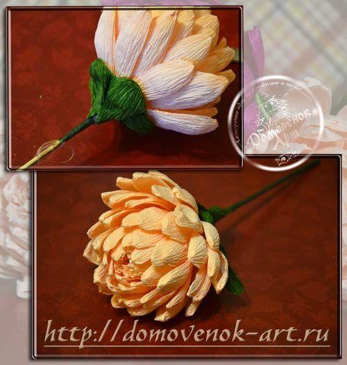 Конфетные хризантемы из гофрированной бумаги | Домовёнок-Арт