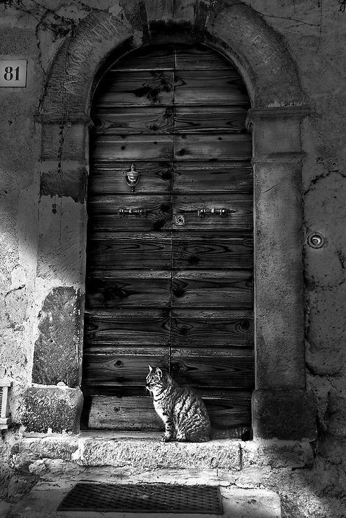 l'attesa by chiara calanca @ http://adoroletuefoto.it