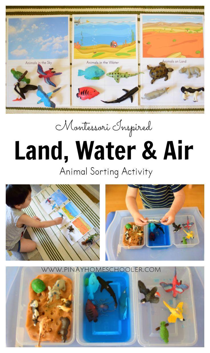 Land, water and air animal sorting