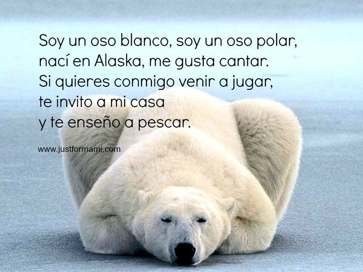 Rimas cortas para niños: Oso polar - this site has lots of short Spanish poems