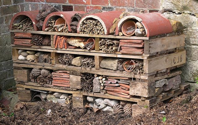 6 Standen bug-house | Flickr - Photo Sharing!