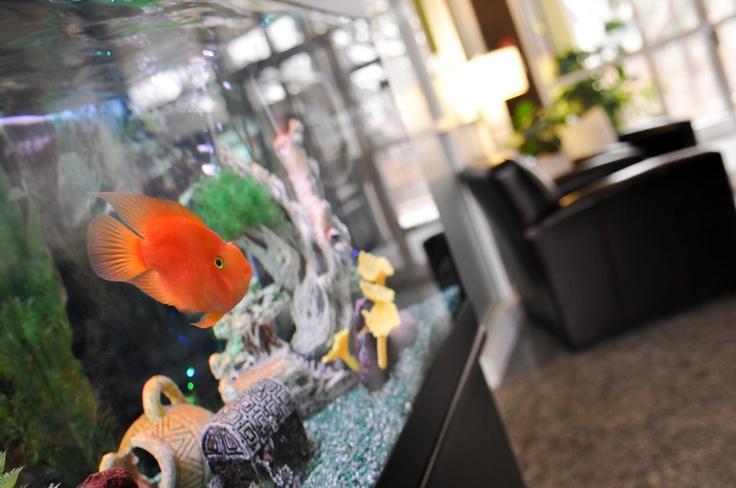 Quality Suites  Google 360 Tour  Google Business View #Google #360 #Toronto
