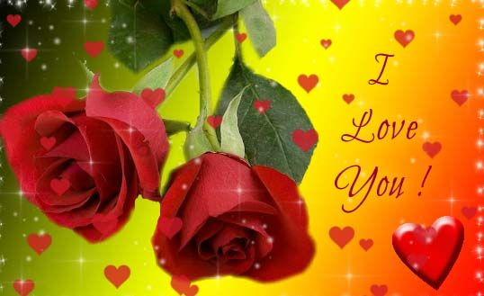 I Love You Greeting Ecard With Rose Flower Animated Heart