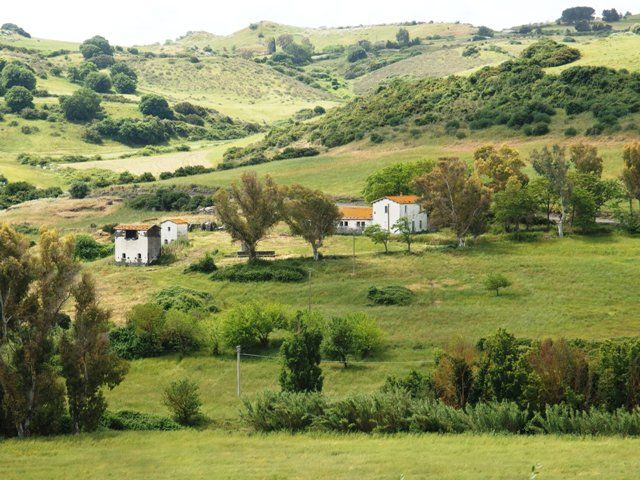 #Farm for sale in northern #Sardinia, #Bulzi: 20 HA land, rural #homes and stable