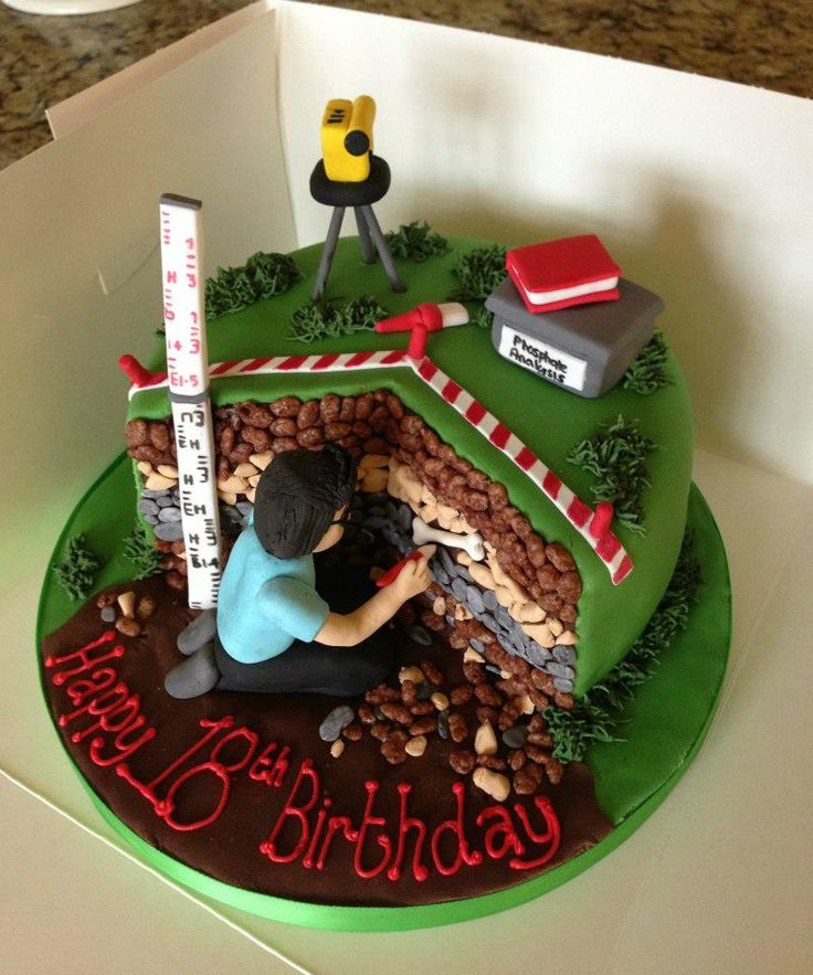 Archaeology or Paleontology Birthday Cake   #Archaeologist archeology archaeological archeological archeologist strata chocolate cultural resources heritage officer excavation Fieldwork  shovel bum, field     #Cowboys of science