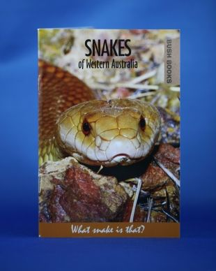 Snakes of Western Australia. All you may wish to know about the snakes found along the Bibbulmun Track.