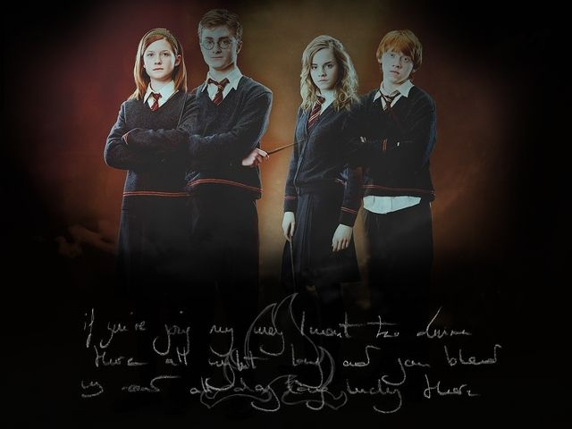 Ron, Hermione, Harry, and Ginny - Harry Potter Photo (7612235 ...
