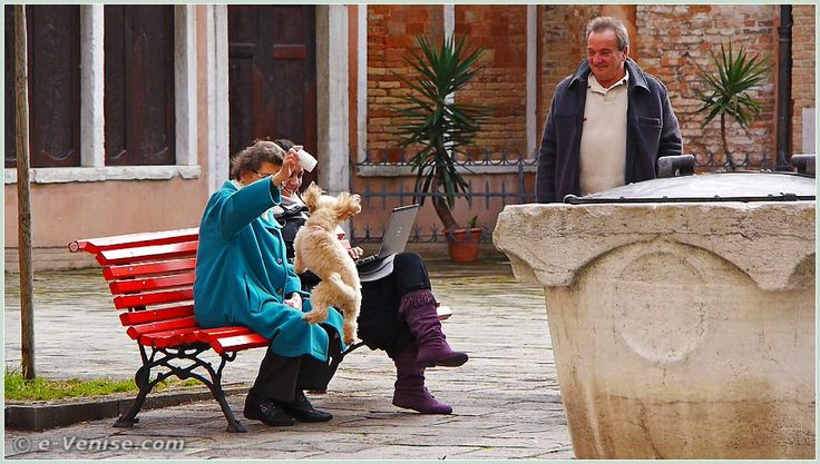 Petit chien plus intéressé par ce gobelet en plastique que par le puits du XIV-XVe siècle, sur le Campo Bandiera e Moro o de la Bragora, dans le sestier du Castello à Venise.
