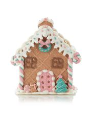 Clay Dough Gingerbread House