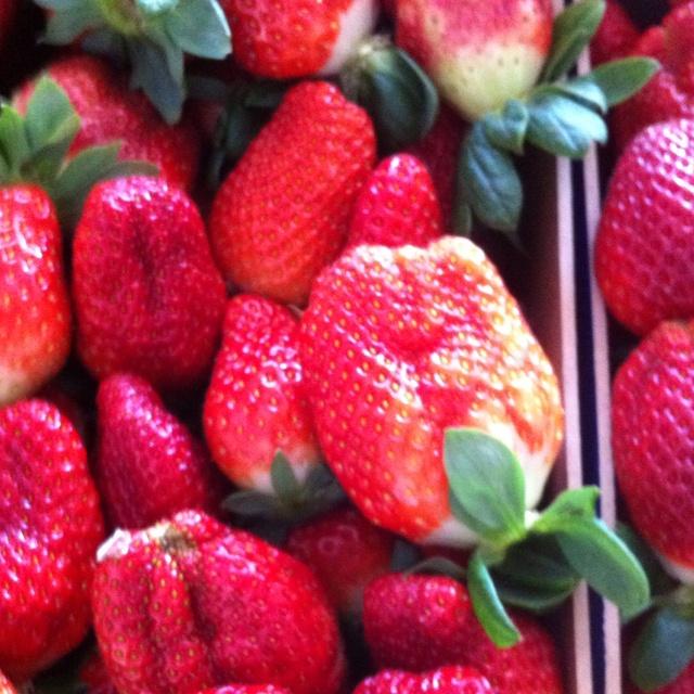 Fresas strawberry