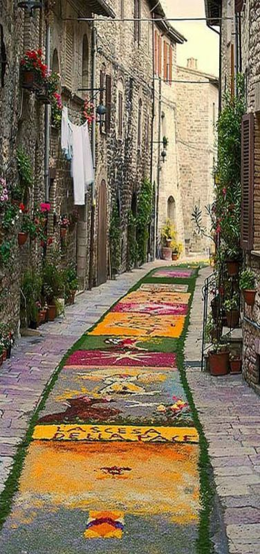 Street of flowers, Assisi, province of Perugia Umbria, Italy | The local people created a tapestry with flower petals along the entire length of the street as part of a religious festival  | by Sean Reidy
