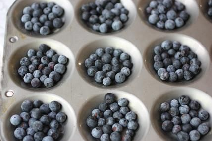 This is the perfect time for picking and freezing blueberries and I have a simple trick.