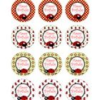"""These sweet birthday pencil toppers are great for a ladybug theme classroom.   The toppers are 2"""" wide circles. Print onto cardstock. Attach to pen..."""