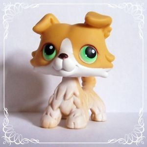 lps collie | Details about Littlest Pet Shop Collie 272