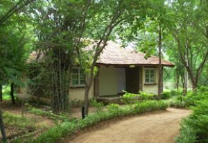 Tiger Trails Resort - Bandhavgarh National Park