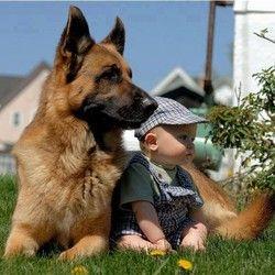 Le rôle de l'animal domestique dans le développement de l'enfant